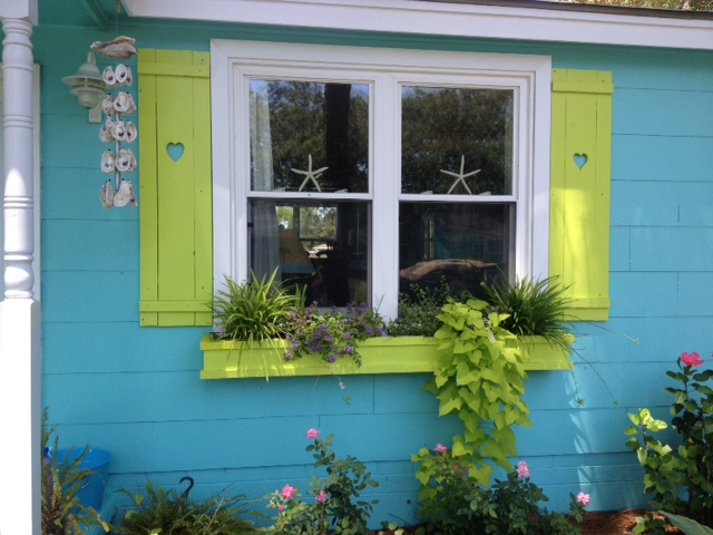 Joy rescued the shutters from a teardown and painted them to match her window boxes.